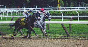 pferde sportwetten charlie sheen